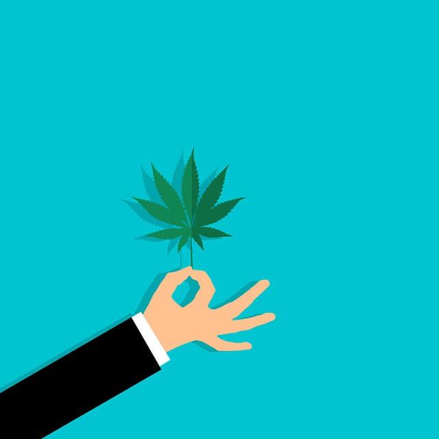 Medical Marijuana - 1 Krocess